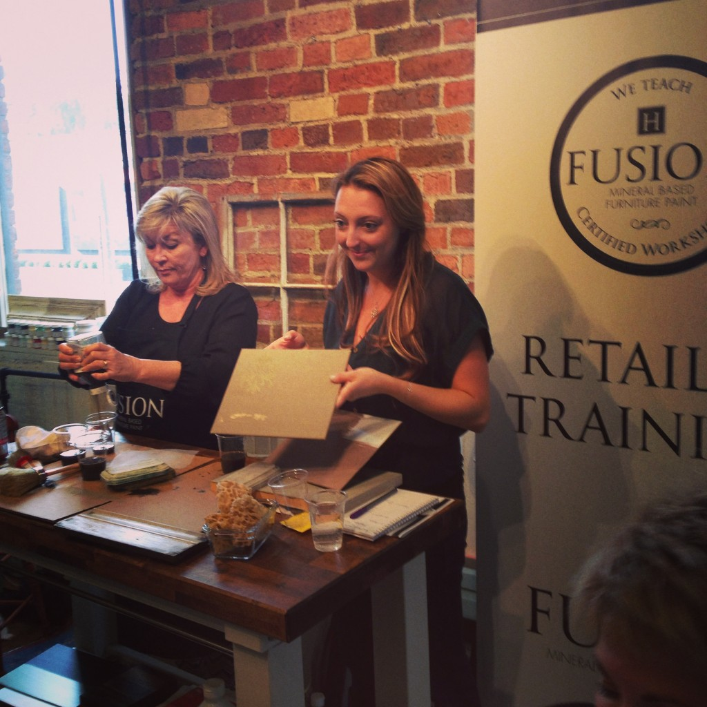 Fusion Mineral Paint Training