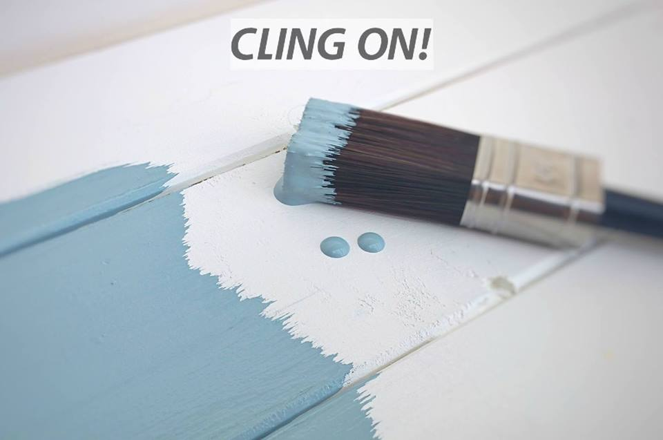 Cling On Paint Brushes Holland