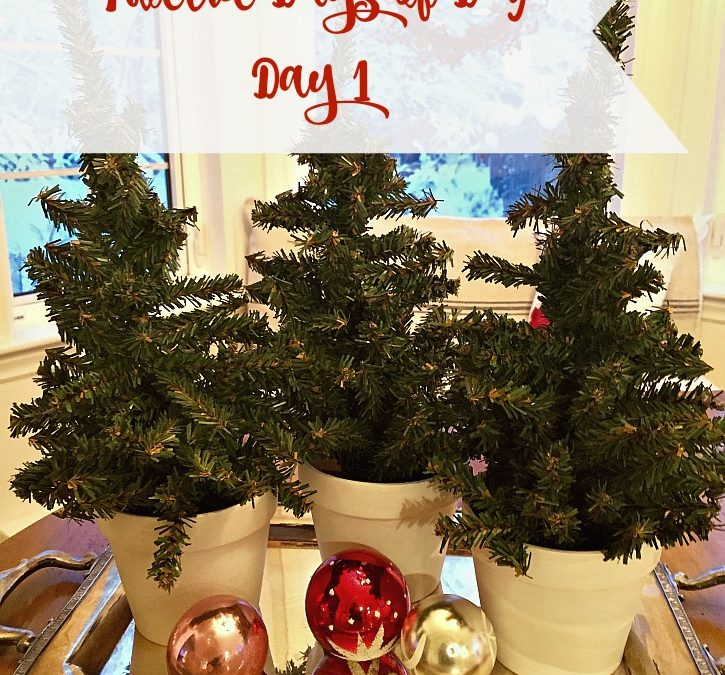 Easy Holiday DIY –  Painted Pots